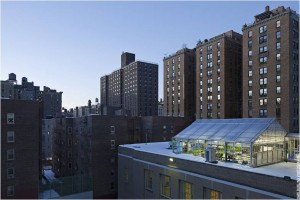 This New York-based rooftop greenhouse is an example of a closed ecological system here on Earth. (Credit: Ari Burling)