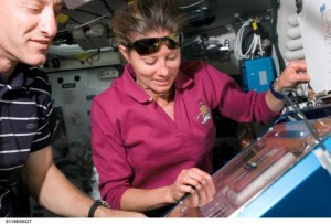 NASA astronauts Tracy Caldwell, STS-118 mission specialist, and Charles Hobaugh, pilot, working with the Commercial Biomedical Testing Module 2 investigation aboard space shuttle Endeavour. (NASA)
