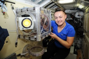 Russian cosmonaut Elena Serova, Expedition 41 flight engineer, works with hardware for the ОБР-8 Khimiya-Obrazovanie (Chemistry-Education) experiment in the Glove Minibox. Image was taken in the Rassvet Mini-Research Module 1 (MRM1) of the International Space Station. (NASA)