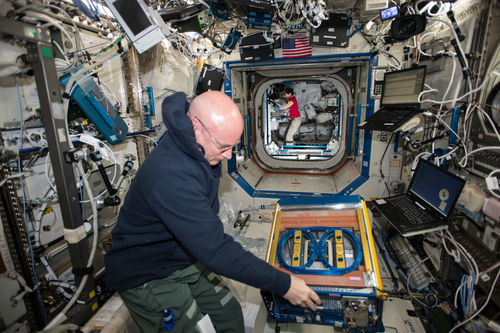 NASA astronaut Scott Kelly handling the Rodent Research Facility aboard the International Space Station. (NASA)