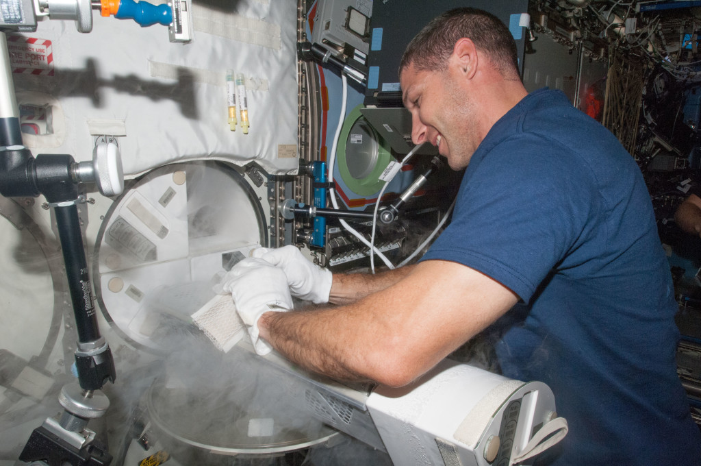 NASA astronaut Michael Hopkins, Expedition 37 flight engineer, prepares to insert samples into a Minus Eighty Laboratory Freezer for ISS (MELFI) dewar tray in the International Space Station's Destiny laboratory. Credits: NASA
