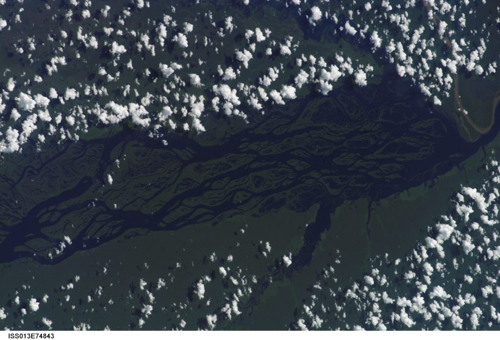 "The wide, multi-island zone in the Rio Negro (Black River) shown in this image from the International Space Station is one of two, long ""archipelagoes"" upstream of the city of Manaus (not shown) in central Amazonia, Brazil. Ninety kilometers of the total 120 kilometers length of this archipelago appear in this view. This image was captured on Sept. 2, 2006. Credits: NASA"