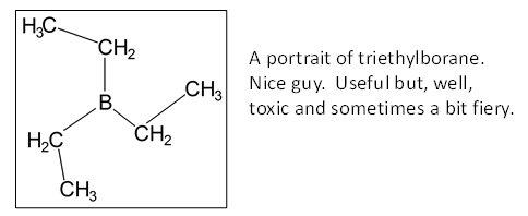 triet1