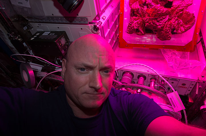 Scott Kelly with plant-growth experiment