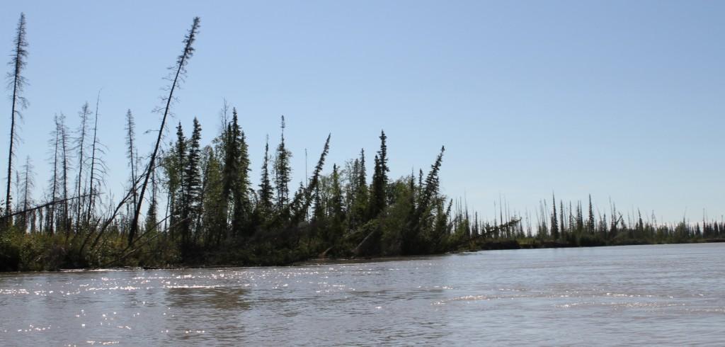 A river.