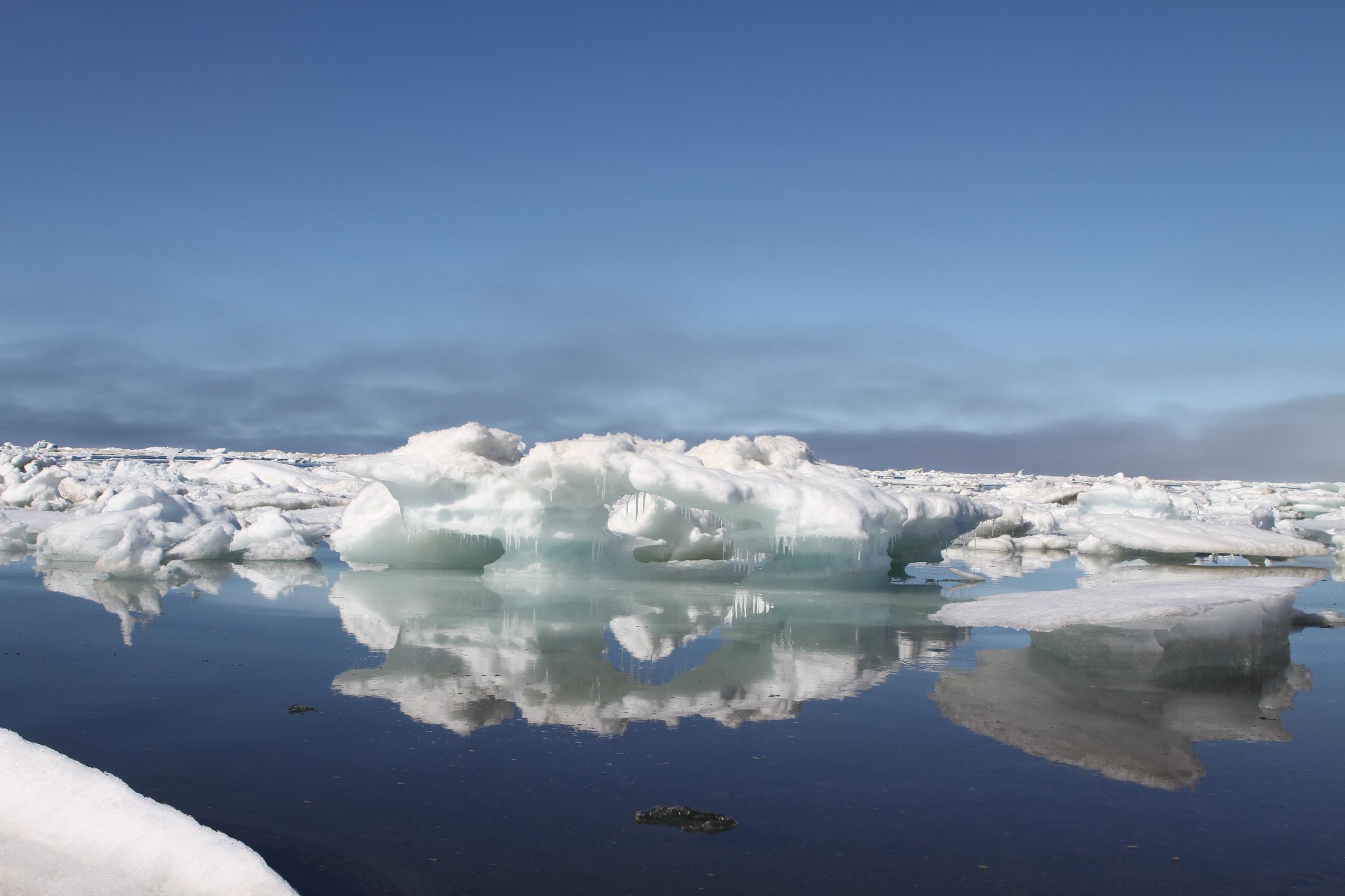 IceBridge – NASA Earth Expeditions