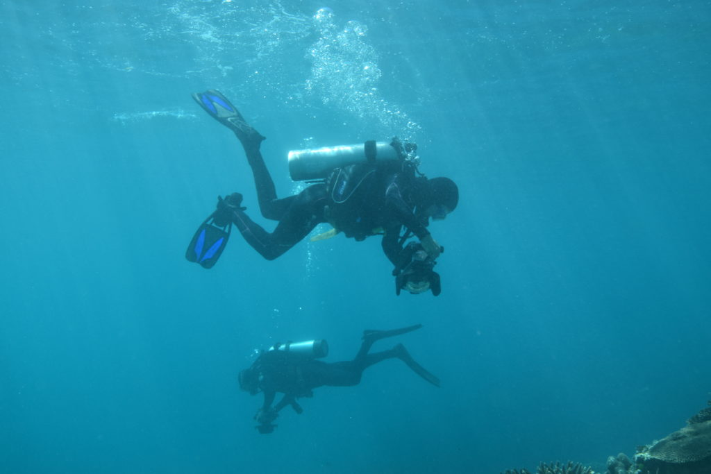 Diver photograph the sea floor