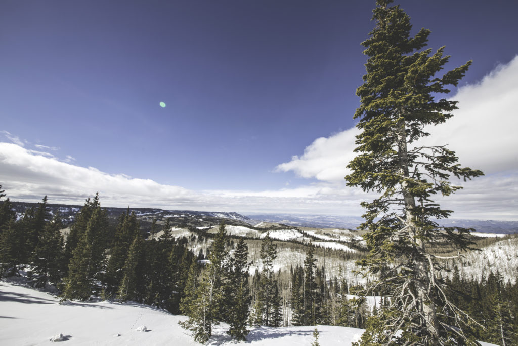 The Grand Mesa in Colorado is one of the sites for this year's SnowEx campaign. Credit: Ryan Cook