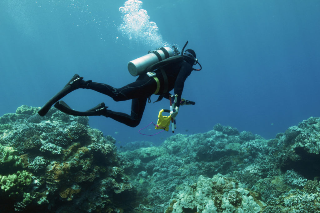Steve Dollar (UH) heads to a benthic validation site on Maui. Credit: Stacy Peltier, BIOS