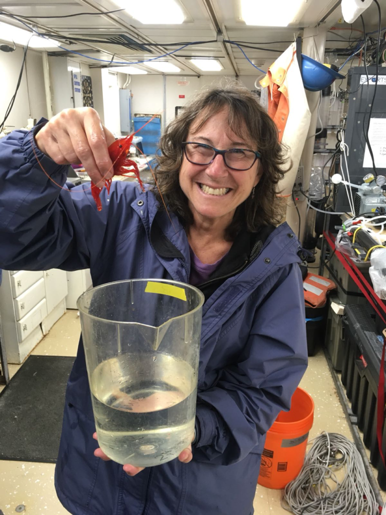 Chief Scientist, Deb Steinberg holding a deep-sea shrimp. Credit: Chandler Countryman