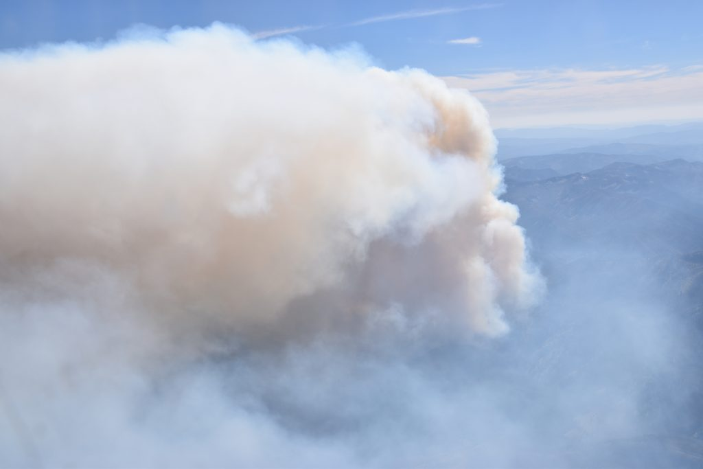 A close up of the Shady Fire's smoke plume during sampling on July 25, 2019. Credit: Bernadett Weinzierl, University of Vienna