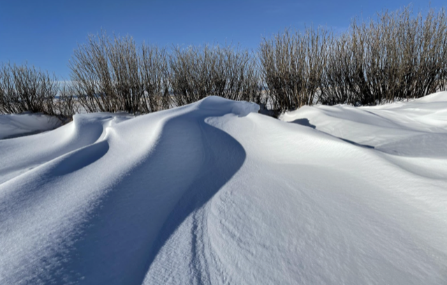 The exposed landscape and high winds of prairie environments create drifts, buried ice and other challenging features for the SnowEx team to investigate. Credit: GEOSWIRL / Montana State University