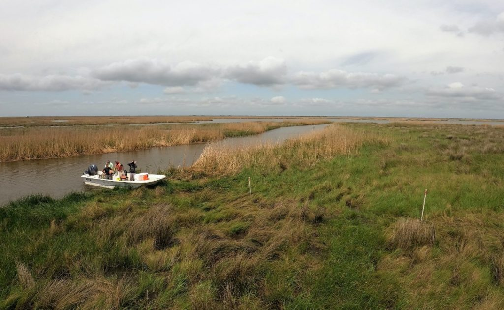 Wide view of coastal Louisiana wetlands taken by Delta-X researchers on an overcast day in March.