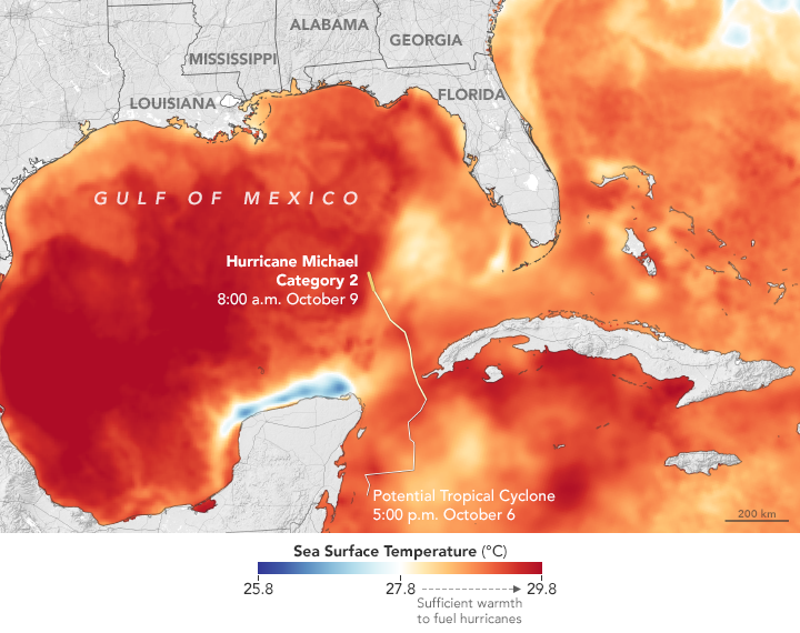 Sea surface temperatures in Michael