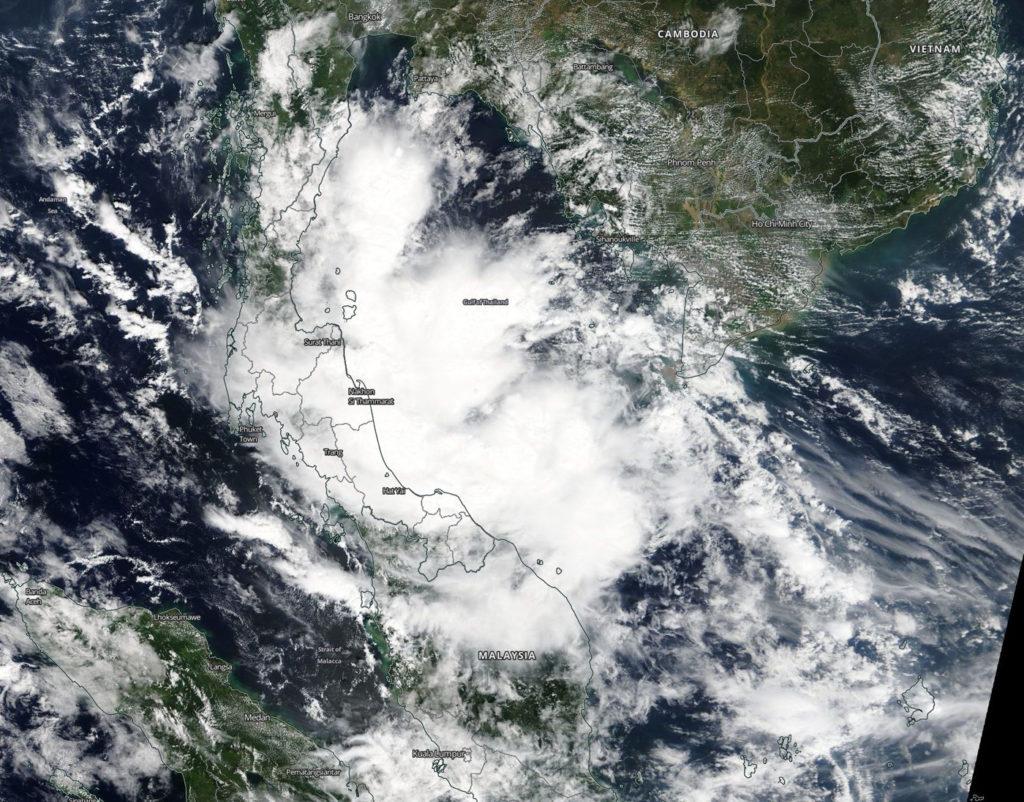 Terra image of Toraji