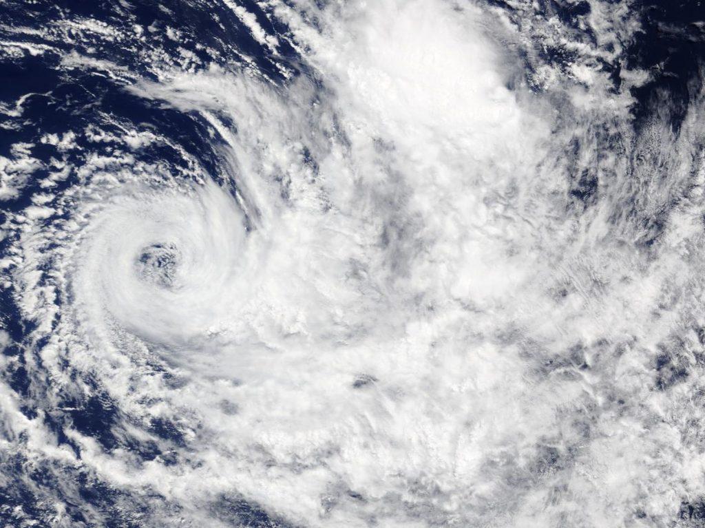 Terra image of Savannah