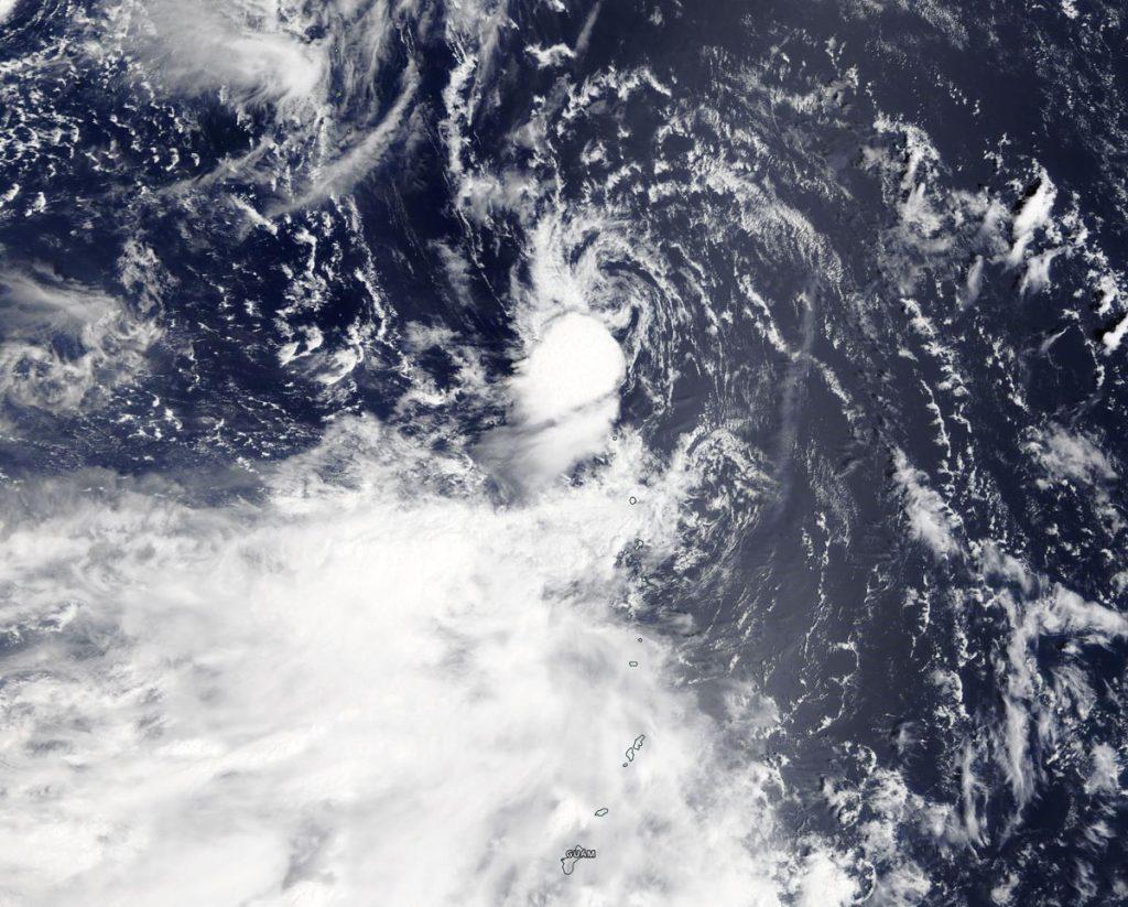 Terra image of Peipah