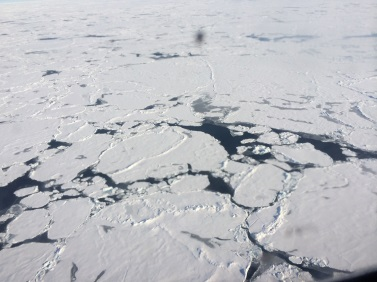broken sea ice