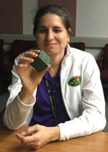 Dr. Gioia Massa takes a look at the substrate created by the students.