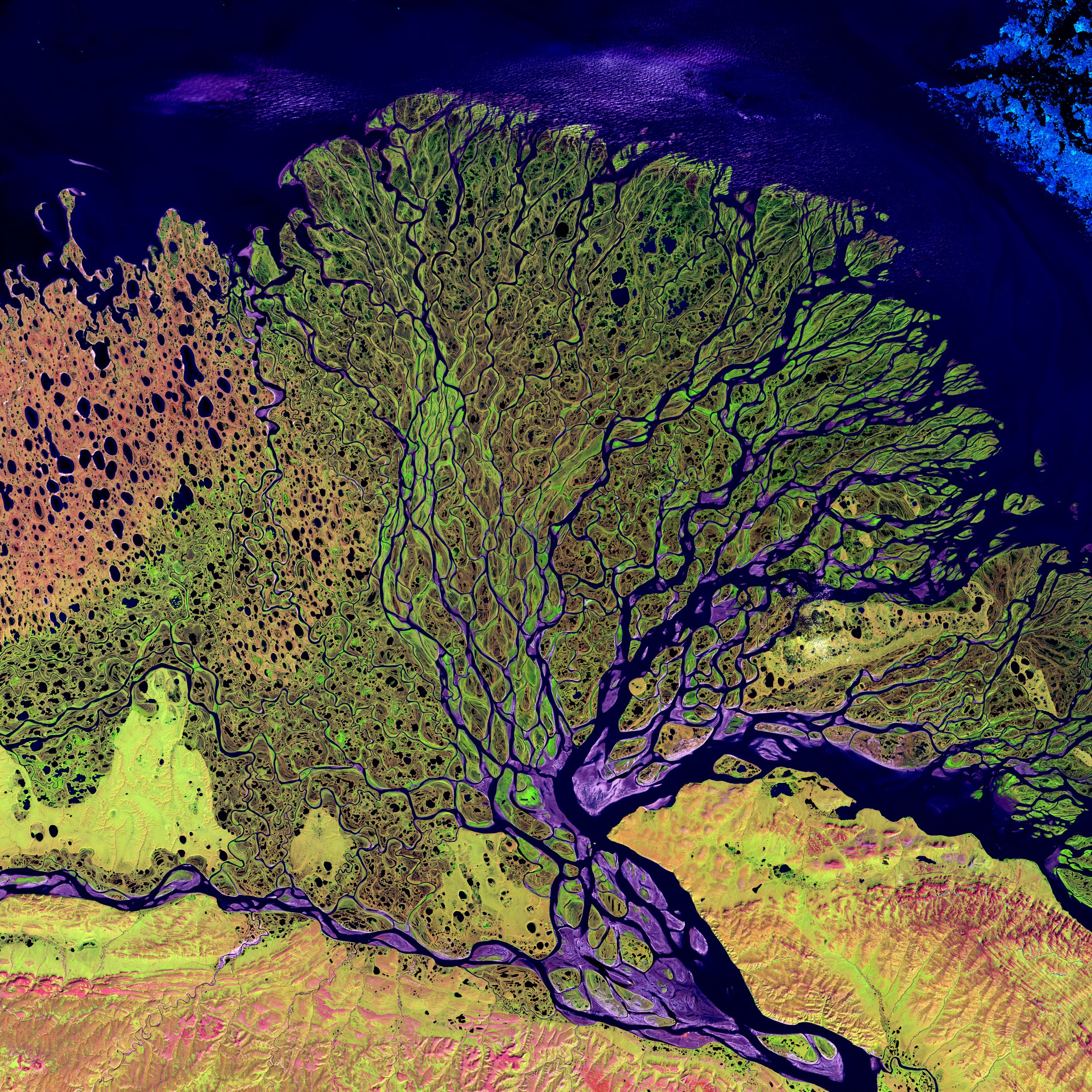 This image of the Lena River taken was with Landsat 7. The Lena Delta Reserve is the most extensive protected wilderness area in Russia.