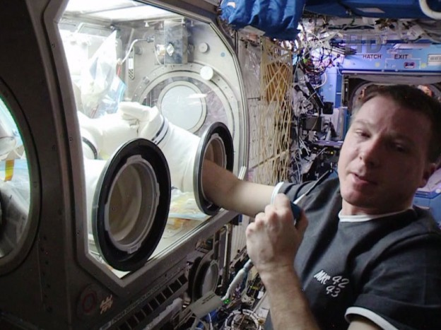 Crew Back at Work Studying Immune System in Space