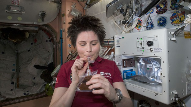 Landing Delayed, Life Science and Dragon Packing for Expedition 43
