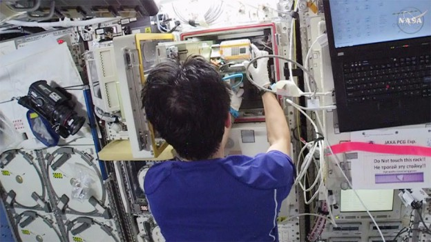 Station Crew Works Life Science Before New Crew Arrives