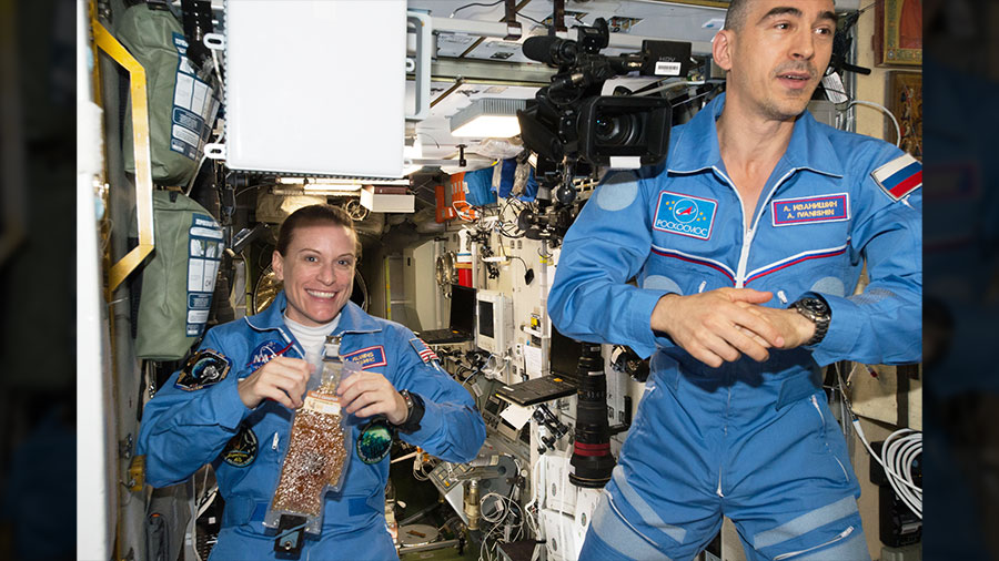 Expedition 48-49 Crew Members Kate Rubins and Anatoly Ivanishin