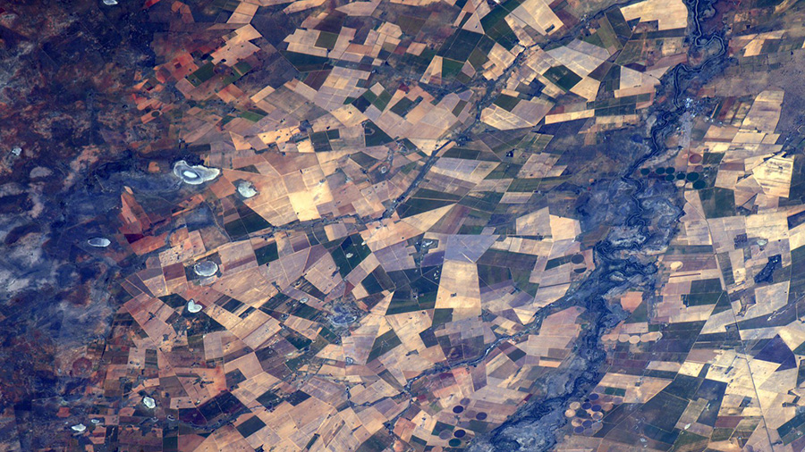 South Africa Agricultural Fields