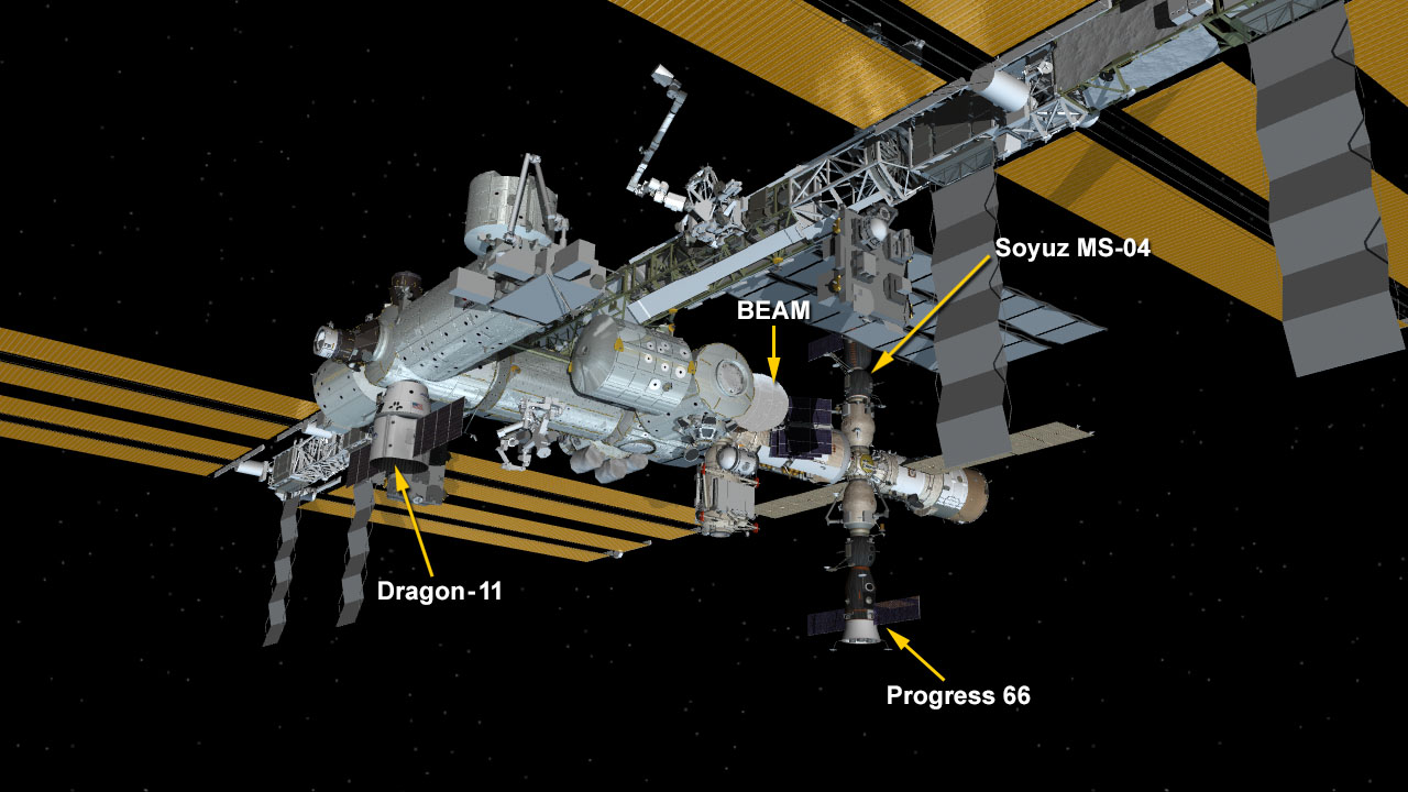 Dragon Installed to Harmony Module