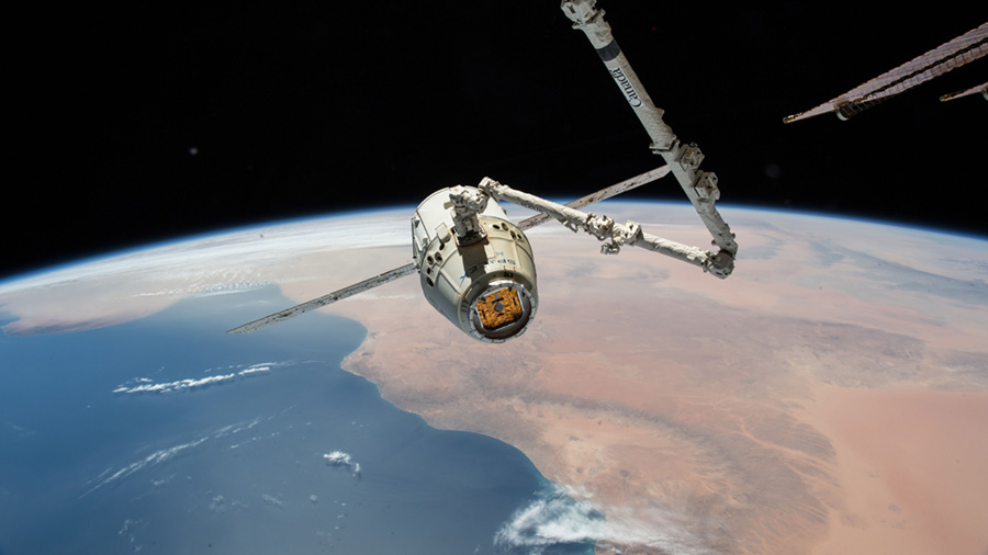 The SpaceX Dragon cargo craft is pictured in the grips of the Canadarm2