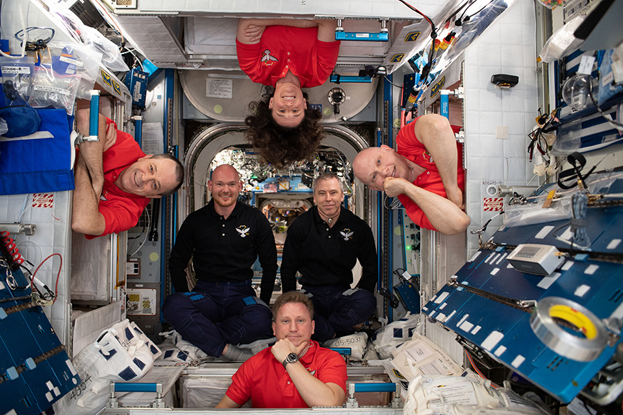 The Expedition 56 crew members pose for a fun portrait