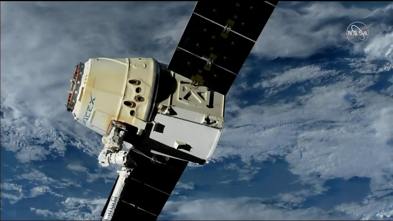 The SpaceX Dragon resupply ship is in the grips of the Canadarm2