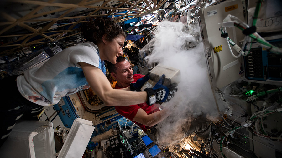 NASA astronauts Christina Koch and Andrew Morgan stow biological research samples into a science freezer located inside the U.S. Destiny laboratory module. Credit: NASA
