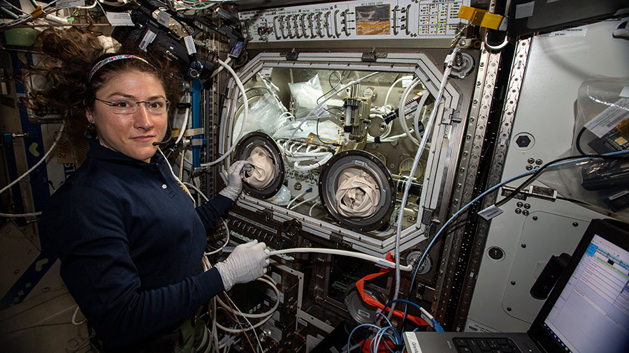 NASA astronaut Christina Koch performs science operations in the Microgravity Science Glovebox for the Ring Sheared Drop human health and advanced materials investigation. Image Credit: NASA