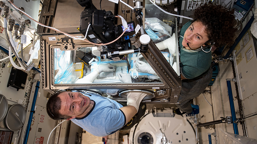 NASA astronauts Andrew Morgan and Jessica Meir conduct research operations