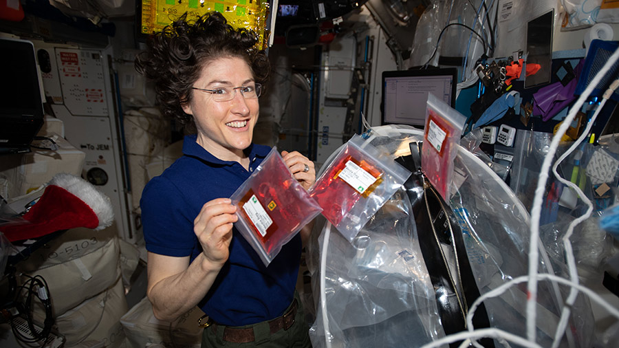NASA astronaut Christina Koch