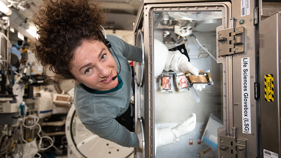 Expedition 62 Flight Engineer Jessica Meir