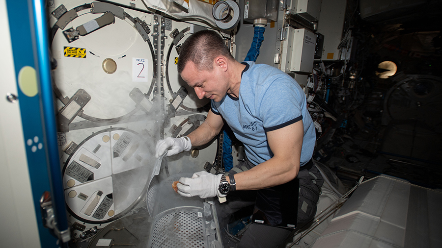 NASA astronaut Andrew Morgan retrieves gut microbe samples