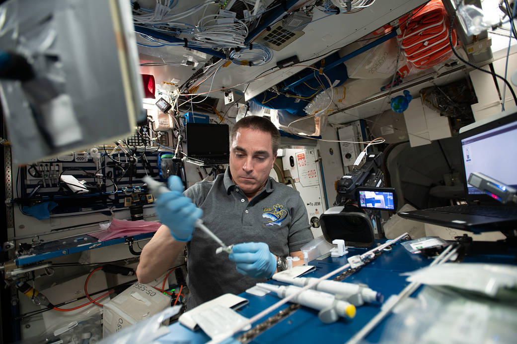 Expedition 63 Commander Chris Cassidy servicing microbial DNA samples for sequencing and identification aboard the International Space Station. Credits: NASA
