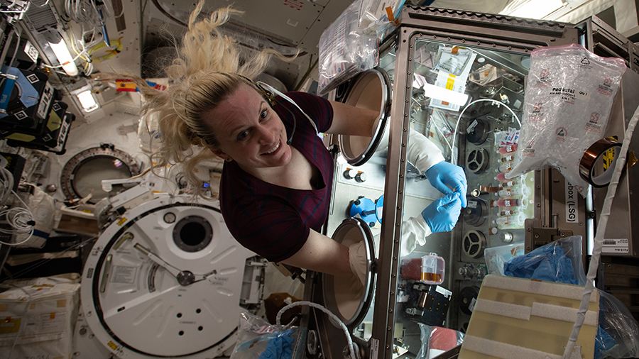 Expedition 64 Flight Engineer Kate Rubins works inside the Life Sciences Glovebox conducting research for the Cardinal Heart study.