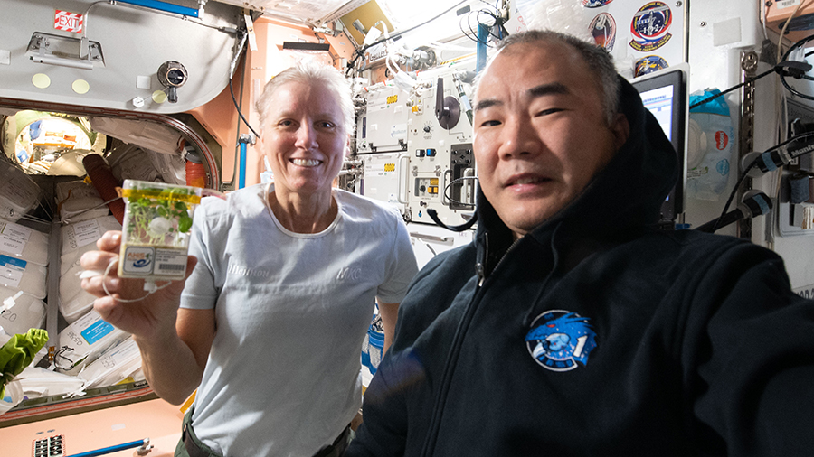 Astronauts Shannon Walker of NASA and Soichi Noguchi of JAXA (Japan Aerospace Exploration Agency) are pictured in the International Space Station's Unity module as Walker displays plants grown for the Asian Herbs in Space space agriculture study.