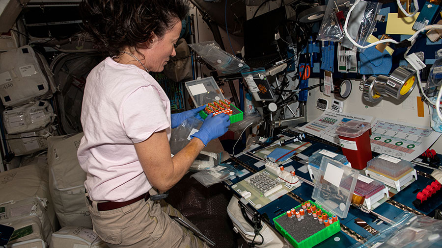 Expedition 65 Flight Engineer Megan McArthur works on a protein crystal experiment potentially benefitting pharmaceutical and biotechnology companies on Earth.