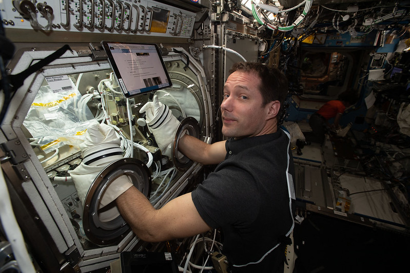 Astronaut Thomas Pesquet of ESA (European Space Agency) works on the Ring-Sheared Drop experiment inside the U.S. Destiny laboratory module's Microgravity Science Glovebox.