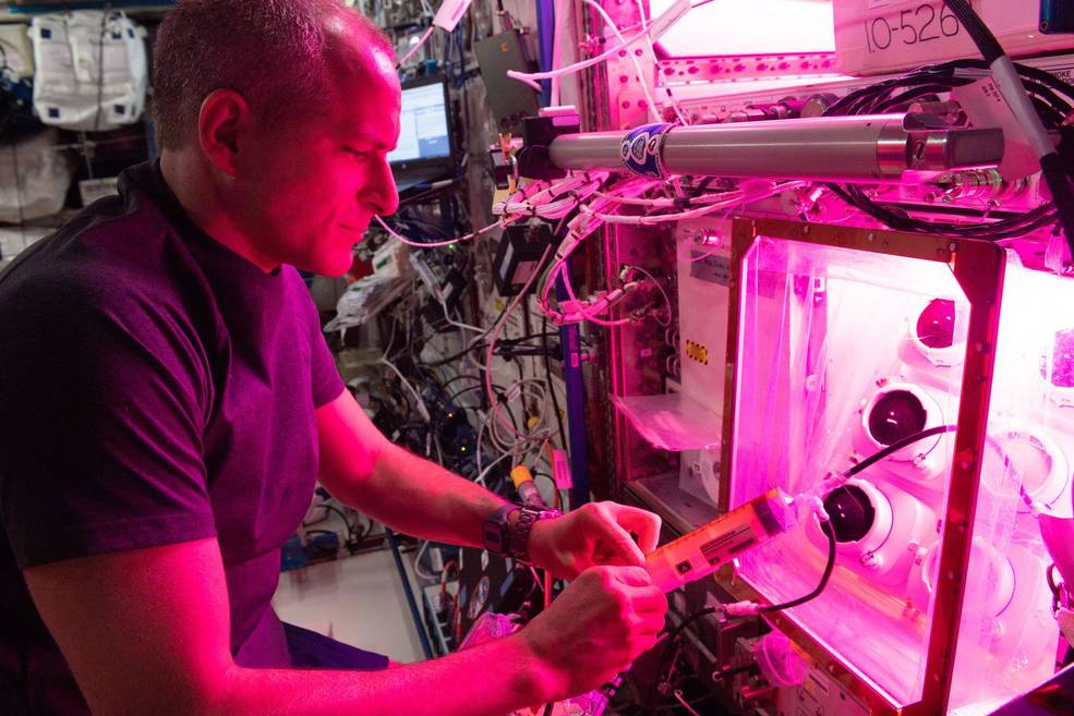 Canadian Space Agency astronaut David Saint-Jacques is photographed performing a reservoir fill on the Veggie Ponds facility in the Columbus module of the International Space Station in 2019.