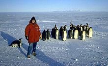 Susan on an Antarctic expedition in 1987 joined by Emperor penguins.