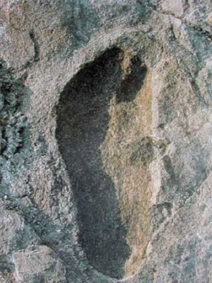 Earliest human footprint