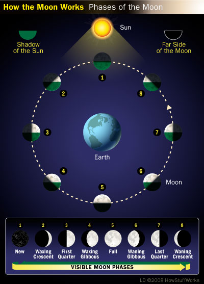 How the Moon Works - Moon Phases