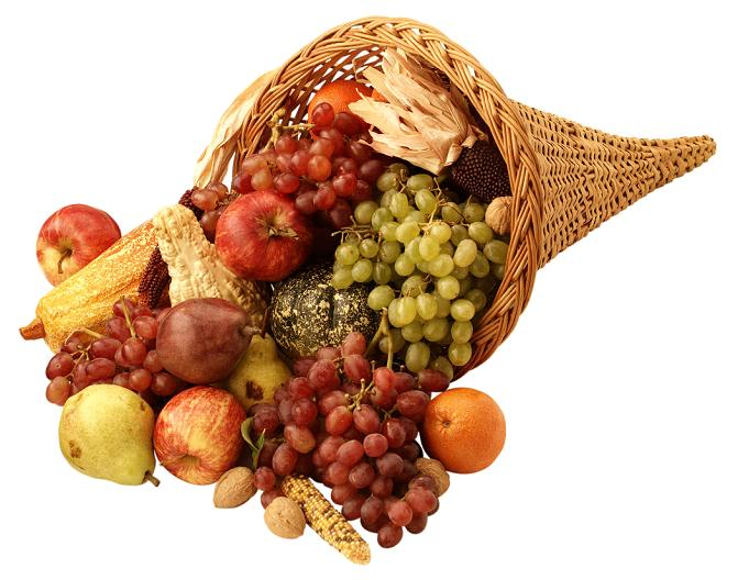 Cornucopia filled with fruit and grain