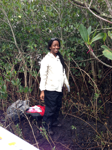 Melissa conducting fieldwork in a Florida mangrove forest | Image Credit: Katrina Laygo